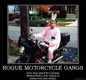 Inspirational Q... Biker Gangs Quotes