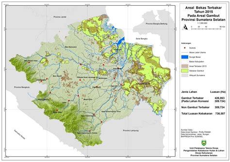 menata lahan gambut di sumatera selatan butuh konsolidasi budaya mongabay co id