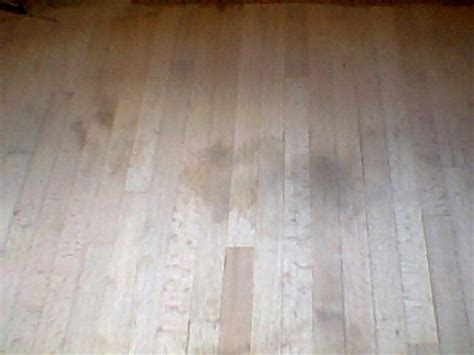 Removing Pet Stains From Wood Floors by Removing Stains From Wood Floors Cool Tips On Removing