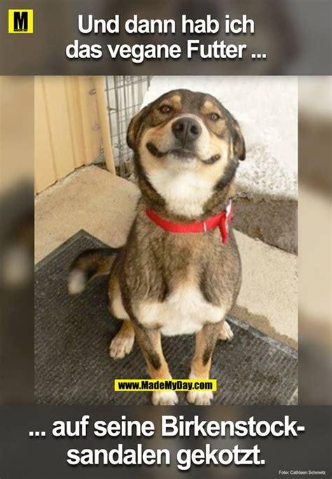 pin von sylvia eldib auf ups hund witze lustige hund