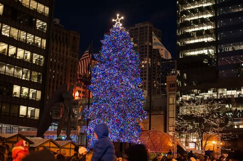 chicagos official christmas tree moving  millennium park