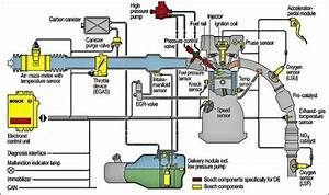 Fuel Injection System Diagram
