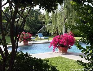 Plantes En Pot Pour Terrasse : plante en pot pour terrasse with m diterran en piscine ~ Dailycaller-alerts.com Idées de Décoration