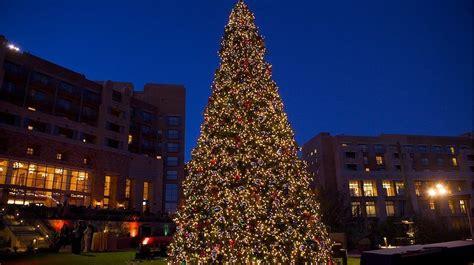 community tree lighting ceremony at jw marriott tucson