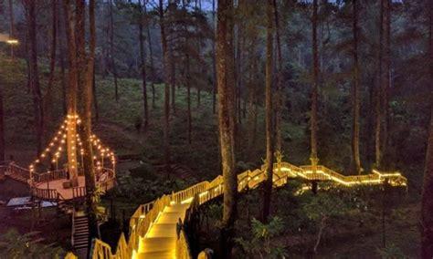 berfoto  jembatan romantis  orchid forest cikole