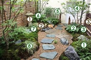 Plante japonaise pour jardin L'univers du jardin