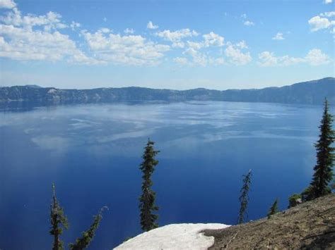 Crater Lake Boat Rental by Bottom Of Lake In 25 Ft Of Clear Water Picture