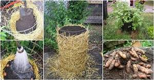 How To Make DIY Potato Towers How To Instructions