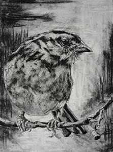 484 best images about Bird Art on Pinterest | Art school ...