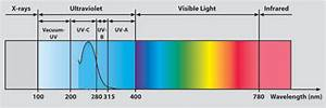 How do black UV lights work Explore