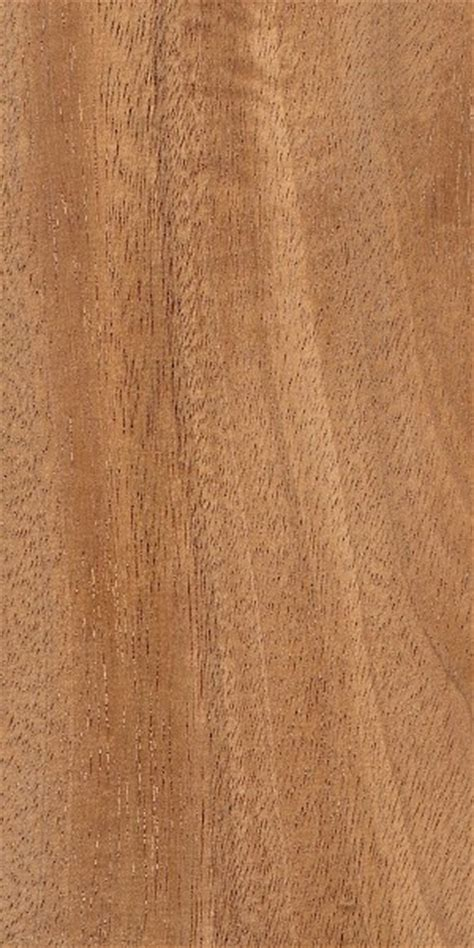 amendoim world wood collection wood flooring
