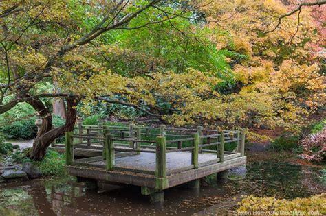 autumn color san francisco