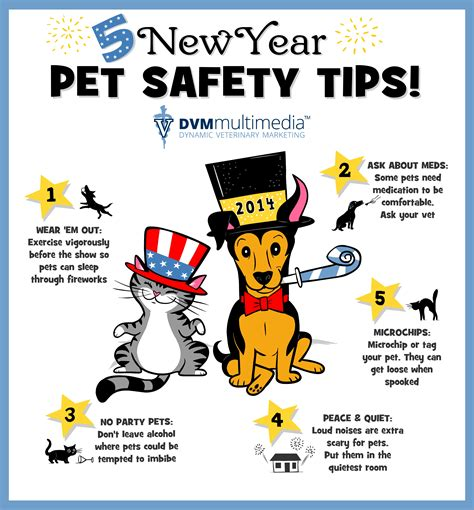 New Year's Pet Safety  South Valley Animal Hospital