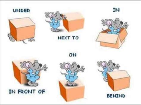 Where Is The Mouse? Learn Prepositions! Youtube