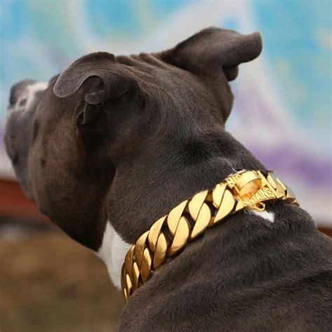 kilo fydbac pet supply  cute dog collars