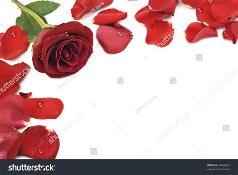 valentines day borders horizontal a beautiful border with white horizontal