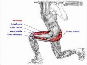Biceps Exercise Chart Killer Leg And Butt Workout Walking Weighted Lunges