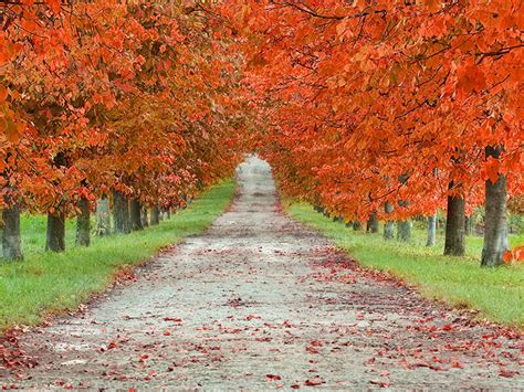 spirituality   autumn equinox fall equinox