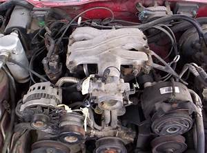 Need Help With 91 Firebird 3 1 Vacuum Hoses