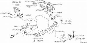Nissan Sentra Stopper Rubber  Engine Mounting