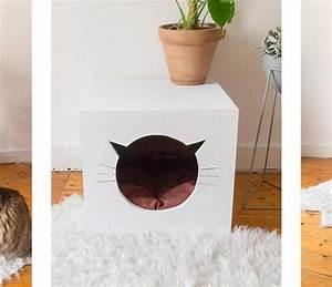 Cabane Pour Chat Exterieur Pas Cher : cabane pour chat tuto jardin piscine et cabane ~ Farleysfitness.com Idées de Décoration