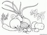 Coloring Vegetables Colorkid sketch template