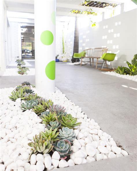 decoration parterre avec galets la d 233 co de jardin originale et pratique parterre de fleurs avec galets ou cailloux et plantes