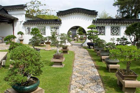 Vorgarten Japanischer Stil by Kirschlorbeer Als Bonsai 187 Pflegetipps