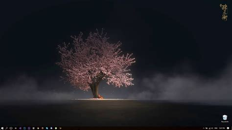 desktophut sakura tree anime  wallpaper youtube