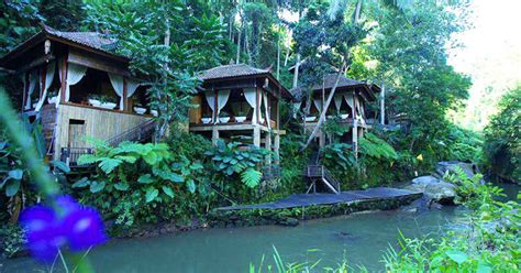 luxury bali resorts 21 rainforest hotels in bali tucked away in lush paradise