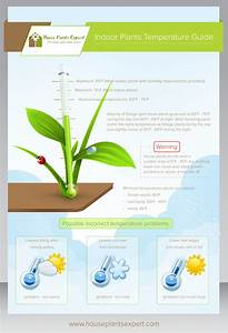 House And Indoor Plants Temperature Guide
