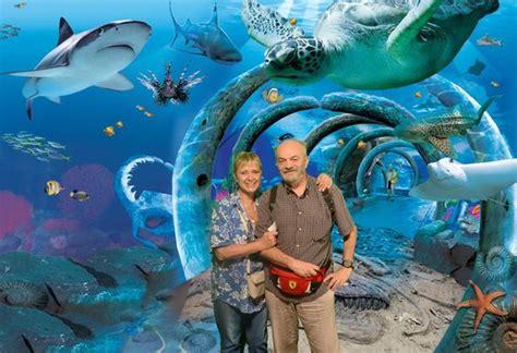sea sydney aquarium fotomontaggio 3 picture of sea sydney aquarium sydney tripadvisor