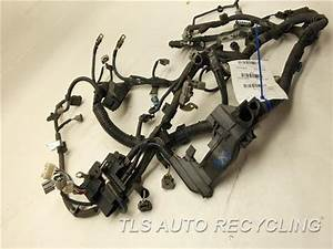 2009 Toyota Corolla Engine Wire Harness - 82121-02m50 - Used