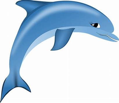 Dolphin Clipart Dolphins Bottlenose Yunus Sea Cartoon