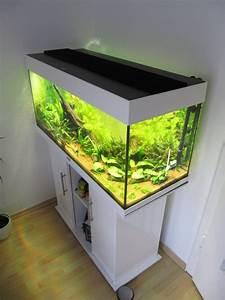 Aquarium Selber Bauen Plexiglas : led plexiglas beleuchtung bauanleitung haus bauen ~ Watch28wear.com Haus und Dekorationen
