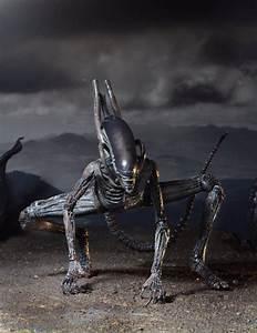 """Alien: Covenant – 7"""" Scale Action Figure – Xenomorph"""