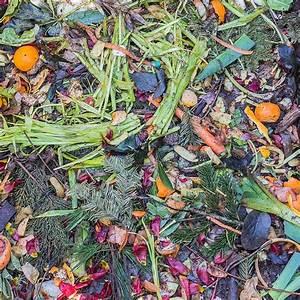 Maden In Der Mülltonne : thema garten ~ Indierocktalk.com Haus und Dekorationen