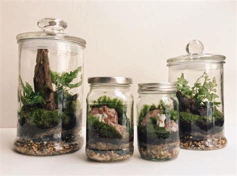 สวนขวดแก้ว (Terrarium)   สวนในแก้ว