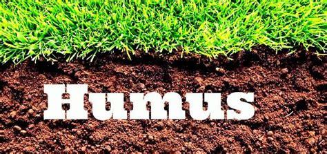 es el humus   sirve como usarlo info util