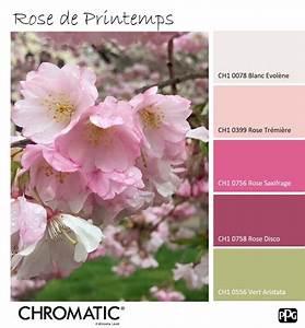 les 64 meilleures images du tableau un mois une couleur With affiche chambre bébé avec vente fleurs par correspondance
