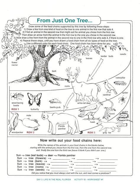 ecosystem worksheets high school