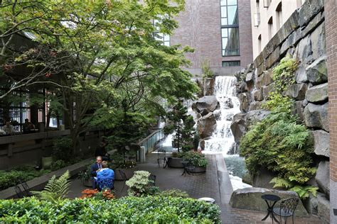 seattle secrets waterfall garden park rain  shine guides