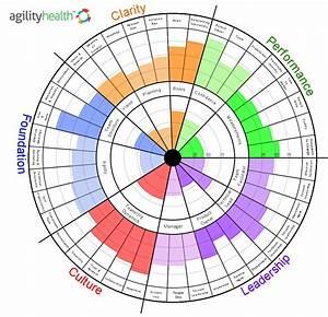 Teamhealth Radar Assessment