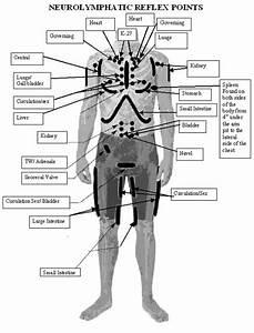 Neurolymphatic Reflex Points
