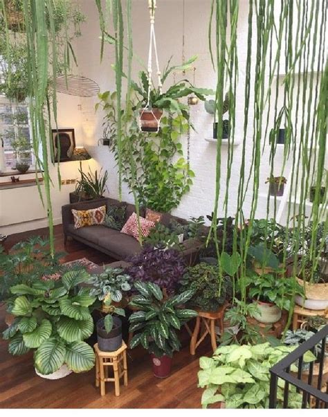 amazing indoor jungle decor ideas  freshen