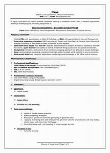 13 Luxury Sample Resume Summary Statement Resume Sample