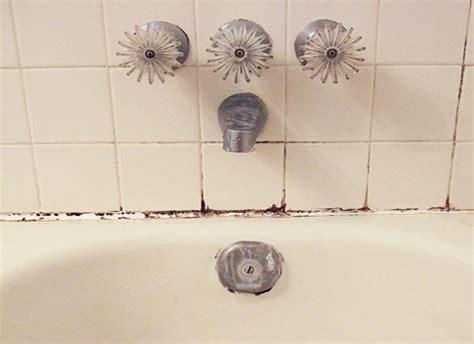 nettoyer moisissure mur salle de bain moisissure dans salle de bain causes cons 233 quences solutions