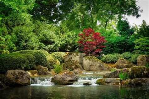 Japanischer Garten Für Zuhause by Free Photo Nature Waters Tree Leaf River Free Image
