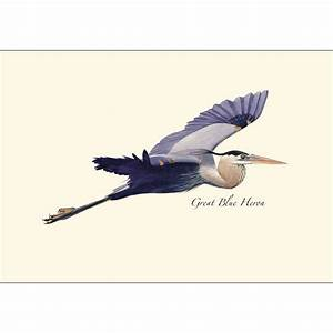 Great Blue Heron in Flight Boxed Notes – Earth Sky + Water