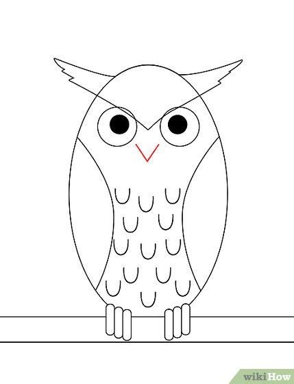 draw  owl  pictures wikihow